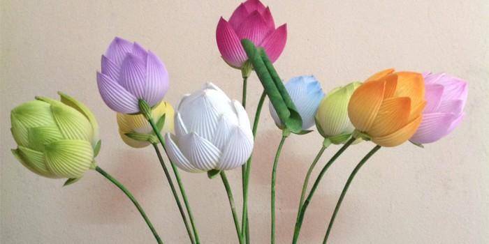 Bộ sản phẩm hoa sen giấy Thanh Tiên