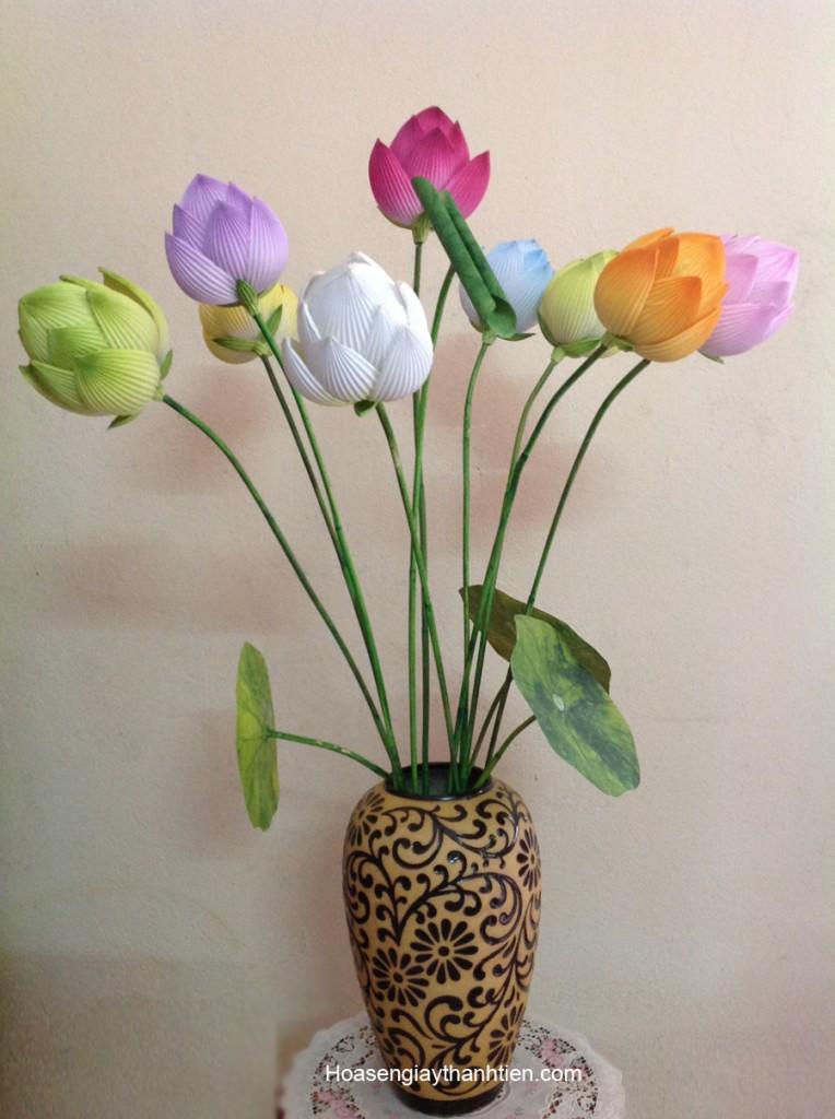 hoa sen giay